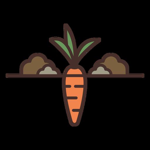 Ilustración de zanahoria de granja