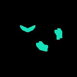 Trazo de estetoscopio poligonal