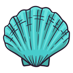 Seashells bay scallop hand drawn