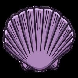 Seashells calico scallop hand drawn