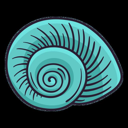 Seashells nautilus hand drawn