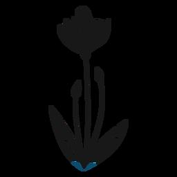 Hojas de brotes de flores de primavera