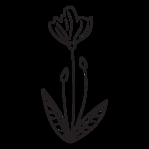 Spring flower buds leaves stroke Transparent PNG