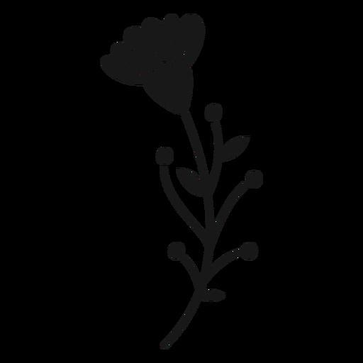 Spring flower buds leaves multiple