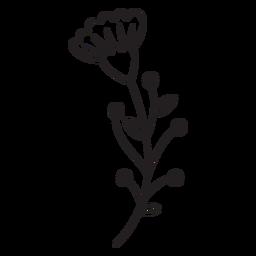 Los botones florales de primavera dejan un trazo múltiple