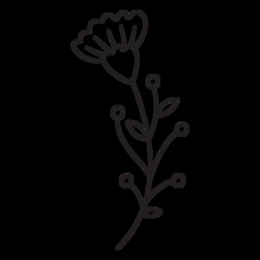 Spring flower buds leaves multiple stroke