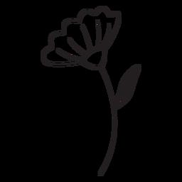 Spring flower leaf stroke