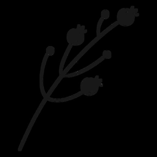 Spring fruit buds