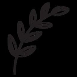 Trazo de hojas de primavera
