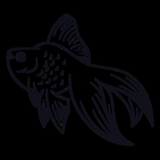 Pez trazo de pescado Transparent PNG