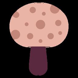 Magician mushroom flat