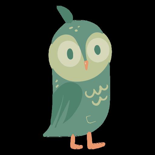 Búho ojos verdes ancho pequeño plano Transparent PNG