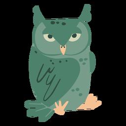 Coruja verde olhando plana
