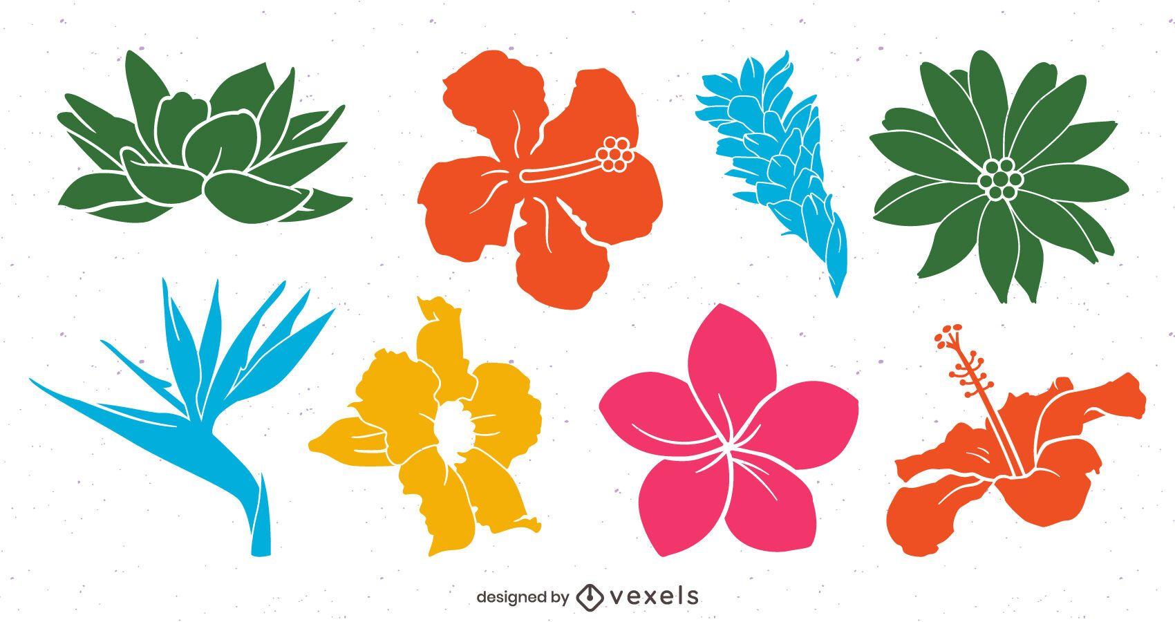 Pacote de flores tropicais coloridas