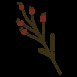 Arándano rama hoja fruta plana