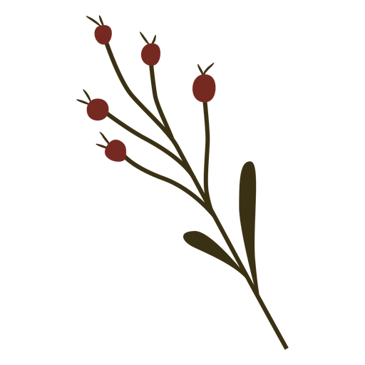 Cranberry branch leaf fruit flat