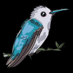 Realistic bird blue hummingbird illustration
