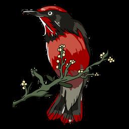 Ilustración de perca de rama de pájaro realista