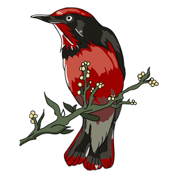 Realistic bird branch perch illustration