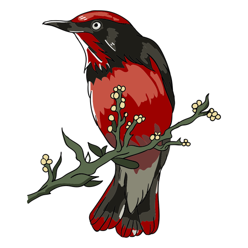 Realistic bird branch perch illustration