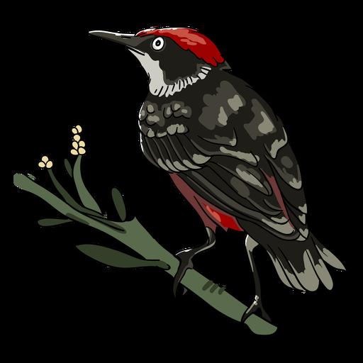 Ilustración de perfil de rama de pájaro realista rojo