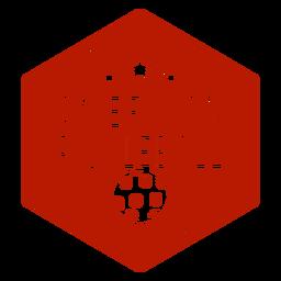 Amerikanisches Pickleball-Sechseck-Abzeichen