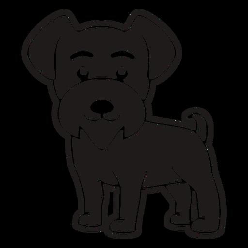 Black cute puppy