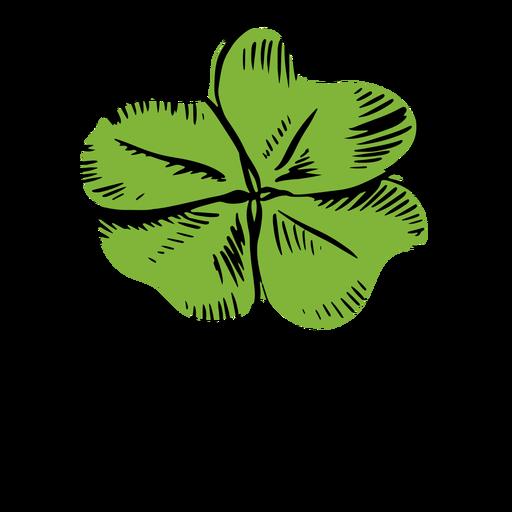 Clover leaf drawn