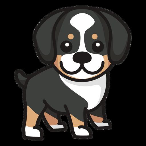 Collie de perro lindo color