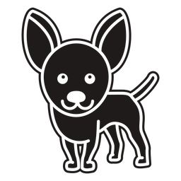 Lindo perro chihuahua negro