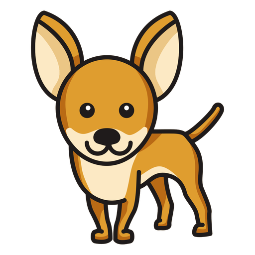 Niedliche farbige Chihuahua