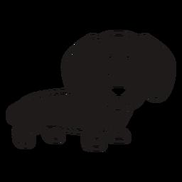 Cute dachshund black