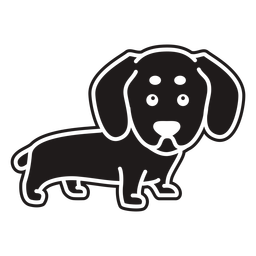 Lindo perro salchicha negro