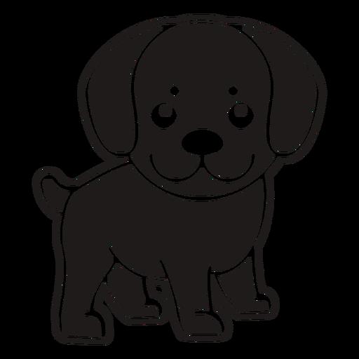 Cute dog black