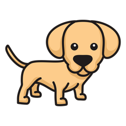 Lindo cachorro labrador de color