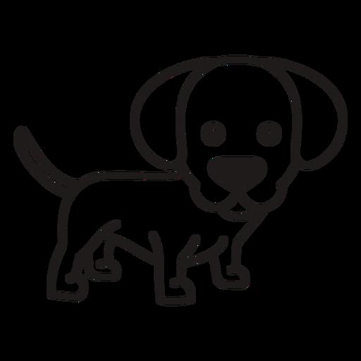Cute puppy stroke