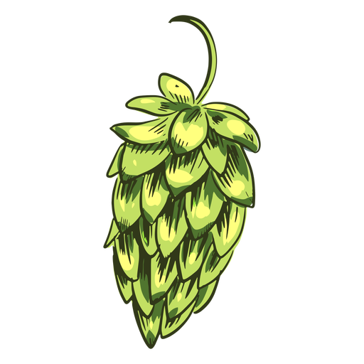 Green hop plant Transparent PNG