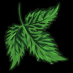 Folha verde desenhada