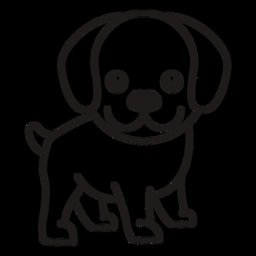 Stroke cute dog