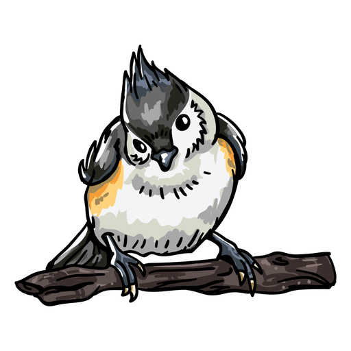 Realistic hand drawn bird front view Transparent PNG
