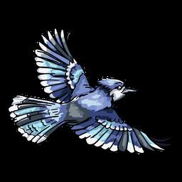 Dibujado a mano realista jay azul volando