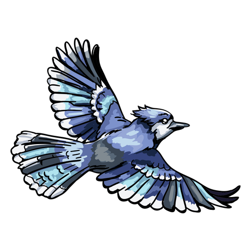 Realistic hand drawn blue jay flying Transparent PNG
