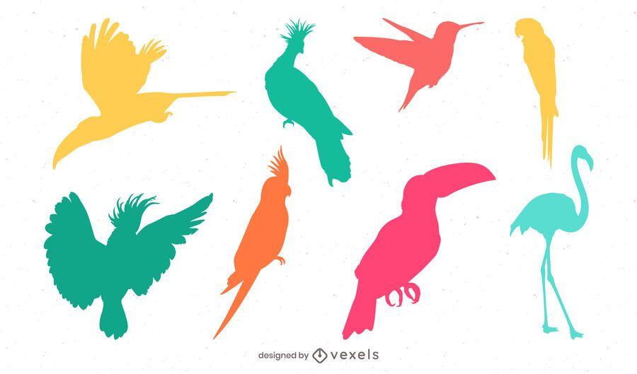 tropical bird silhouette set