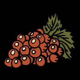Manojo de uvas dibujadas a mano
