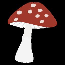Cogumelo manchado plana