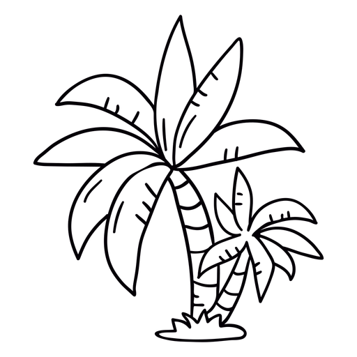 Palm tree hand drawn stroke Transparent PNG