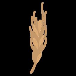Rama de trigo plana