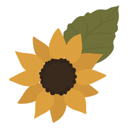 Yellow sunflower leaf flat