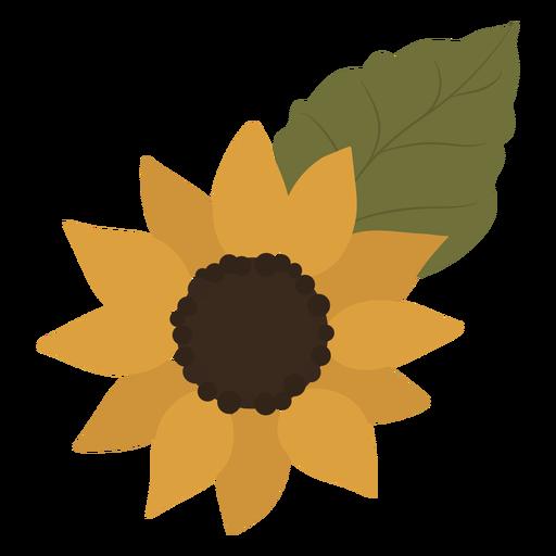 Yellow sunflower leaf flat