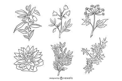 Pacote de flores de traço chinês desenhado à mão